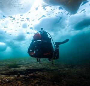 Ice Dive 2020